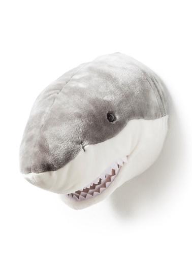 Köpek Balığı Jack-Wild&Soft